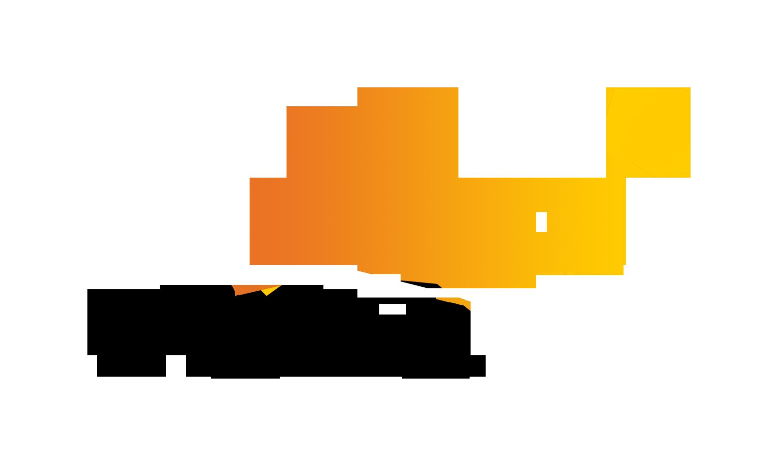 The Arc United States